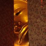 bangkok reclining buddha wat po