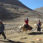 kailash yak man with Dawa, me on the back and Pima