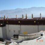 tibet drepung rooftop