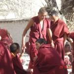 tibet sera monestary debating 2